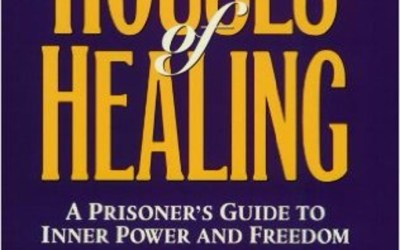 Review of Houses of Healing by Robin Casarjian
