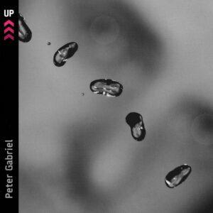Peter_Gabriel-Up-Frontal