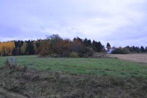 Hääkiven kalmisto kuvan metsäsaarekkeella.