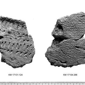Sarsan löytöpaikan mukaan nimettyä kivikautista Sarsan keramiikkaa. Kuva: Museovirasto, CC BY 4.0.
