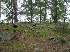 Tampere Lentävänniemen lapinraunio