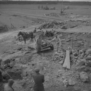 Arkeologiset kaivaukset Urjalan Ali-Uotilan kalmistolla 1953. Kuva: Vapriikin kuva-arkisto.