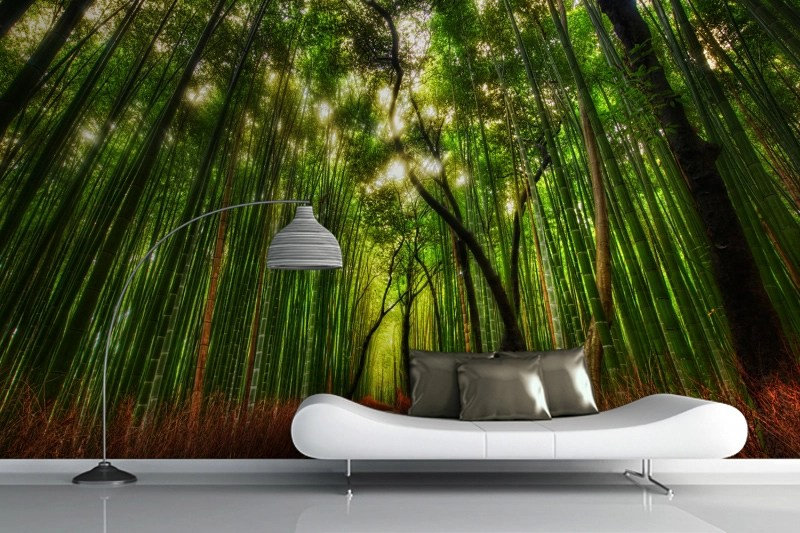 Rising Bamboo Forest Wall Mural