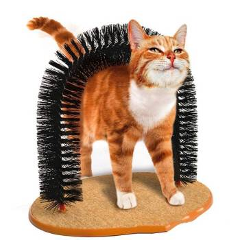 Cat's Scratching Arch Cats Grooming & Care
