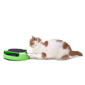 Mouse-to-Catch Cat Training Toy Cats Training
