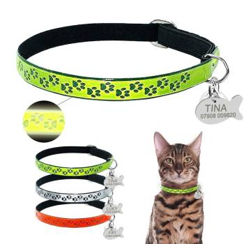 Safety Fluorescent Cat Collars with ID Tag in Shape Fish Cats Collars, Harnesses & Leashes