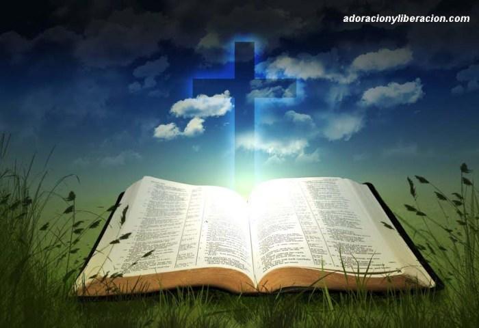 la-biblia copia
