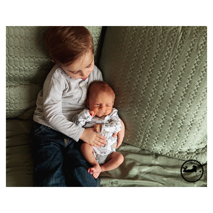 """Brothers.  """"Did we just become best friends?""""  Photographed by Adored by Meghan, lifestyle newborn family portrait photographer, Tri-Cities, WA."""