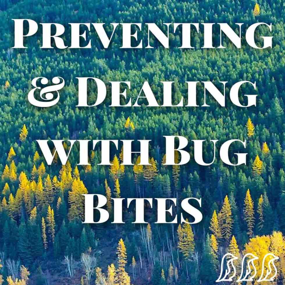 Preventing & Dealing with Bug Bites