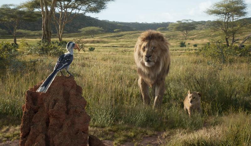 Szenenbild aus THE LION KING (2019) - Zazu, Mufasa und Simba - © Disney
