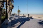 ...where we walked and observed beach behavior.
