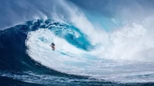 surfista_adoro_home_office