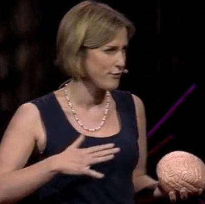 cortex préfrontal ado