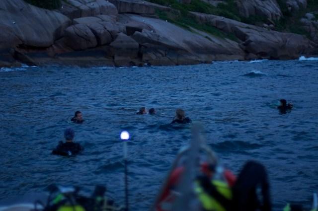 Curso de mergulho avançado padi - adrenailha floripa