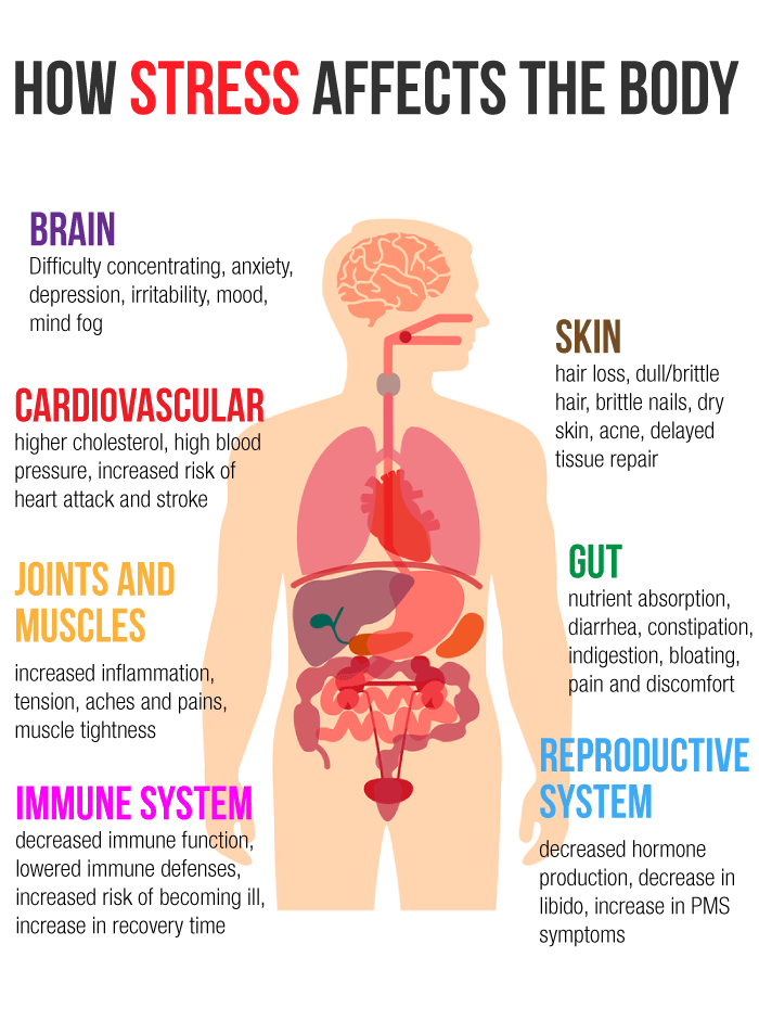 How Stress Affects The Body Dr James L Wilsons