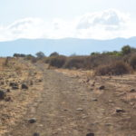 Path_of_Israel_National_Trail_in_Hula_Valley