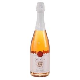 Suvremena višejezična webshop platforma za on-line naručivanje namirnica, vina & gourmet Adria Klik Sruper brza dostava