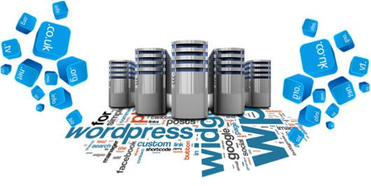 kako da kupim domen i hosting i instaliram wordpress