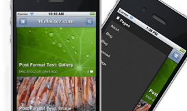 wp-mobile-detector-plugin