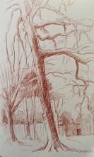 Adriana Burgos, Sketchbook study of trees in sepia copic multi liner