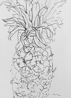 "Adriana Burgos, ""Pineapple study"", pen on paper"