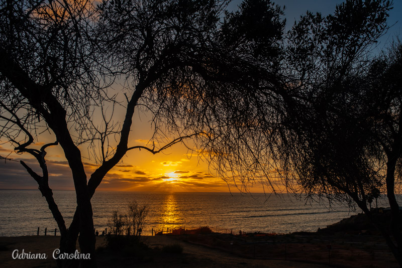 destination-family-photographer-fotografo-de-familia-em-san-diego-california-fotos-em-san-diego-california-family-photographer-san-diego-ca-usa_-19