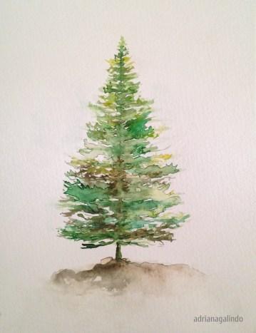 Pine, tree 5, 21 x 15 cm. Sold