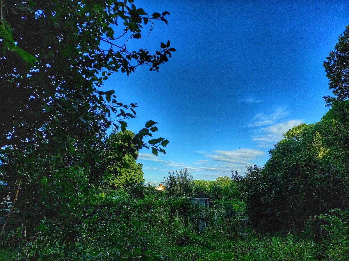 Jardines en Alemania: ¡en la naturaleza!