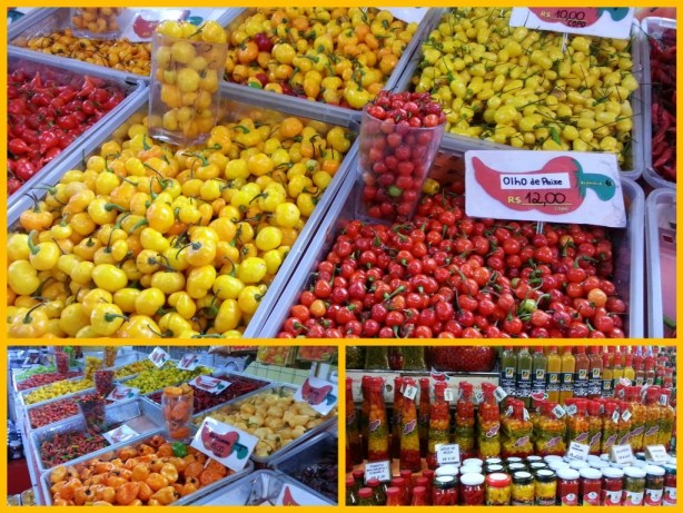 The many varieties of peppers in Brazil