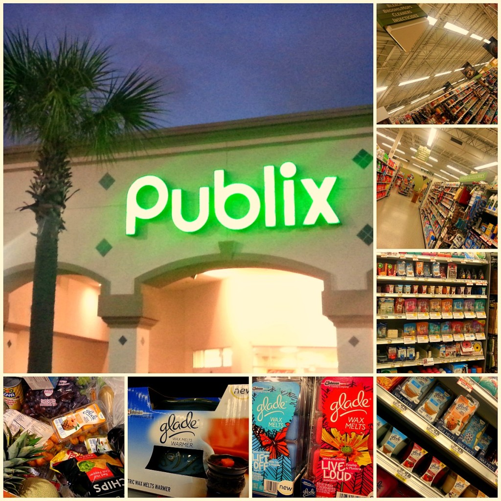 Publix at Kings Ridge in Clermont, Florida #MeltsBestFeelings #shop