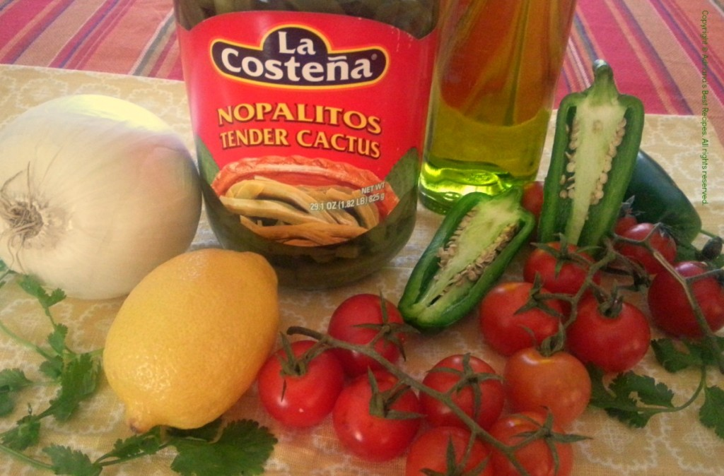 Ingredients for the Cactus Nopalitos Salad #ABRecipes