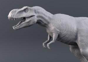 the digital dinosaur vs digital native
