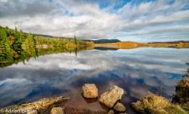 Bodgynydd lake in the Gwydir Forest North Wales.