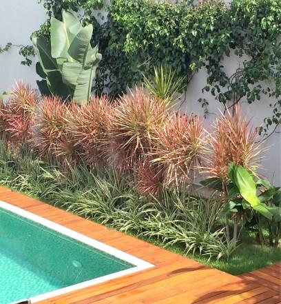 adriano-gronard-paisagismo-arquitetura-interiores-clorofito-piscina