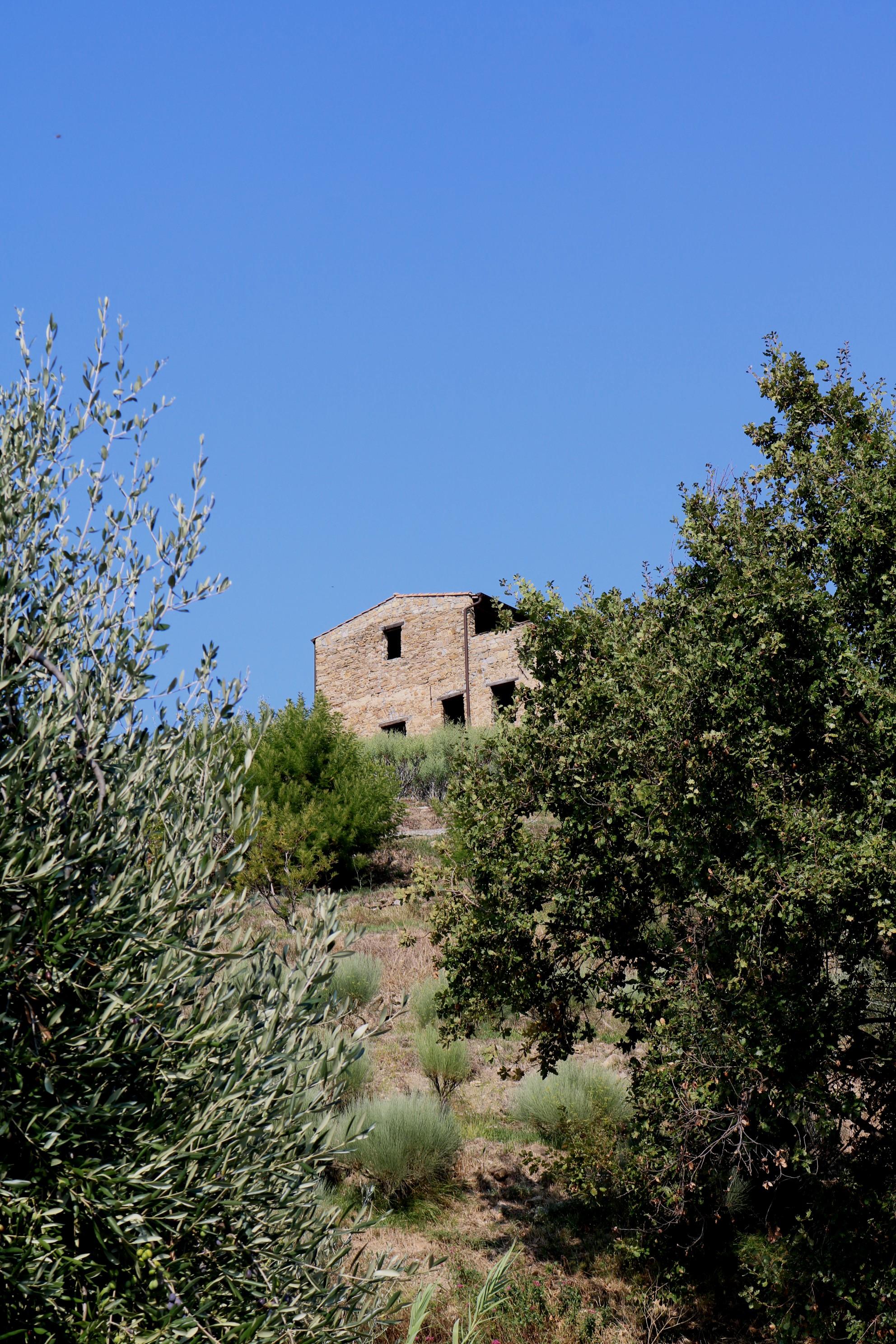 San Biagio della Cima (IM) – rustico sovrastante Strada Sanferian