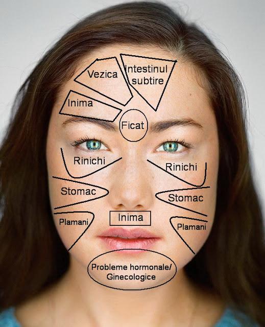 Harta Chinezeasca a feței