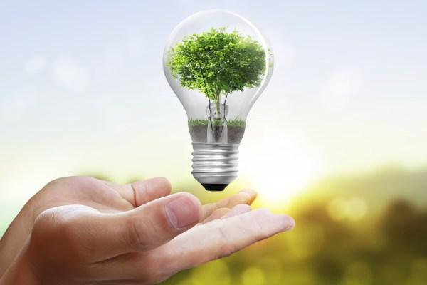 Economie la energie