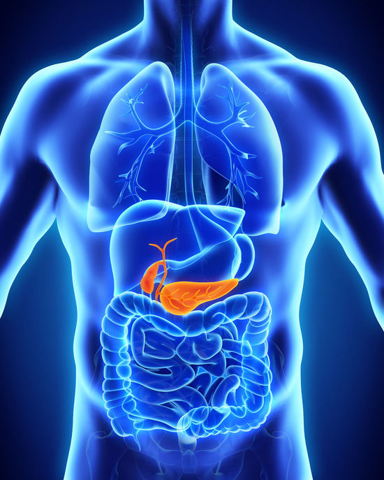 Pancreasul