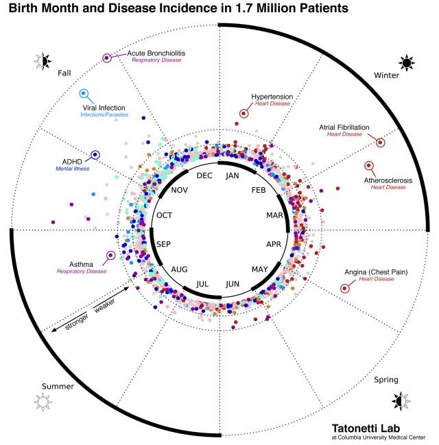 harta bolilor