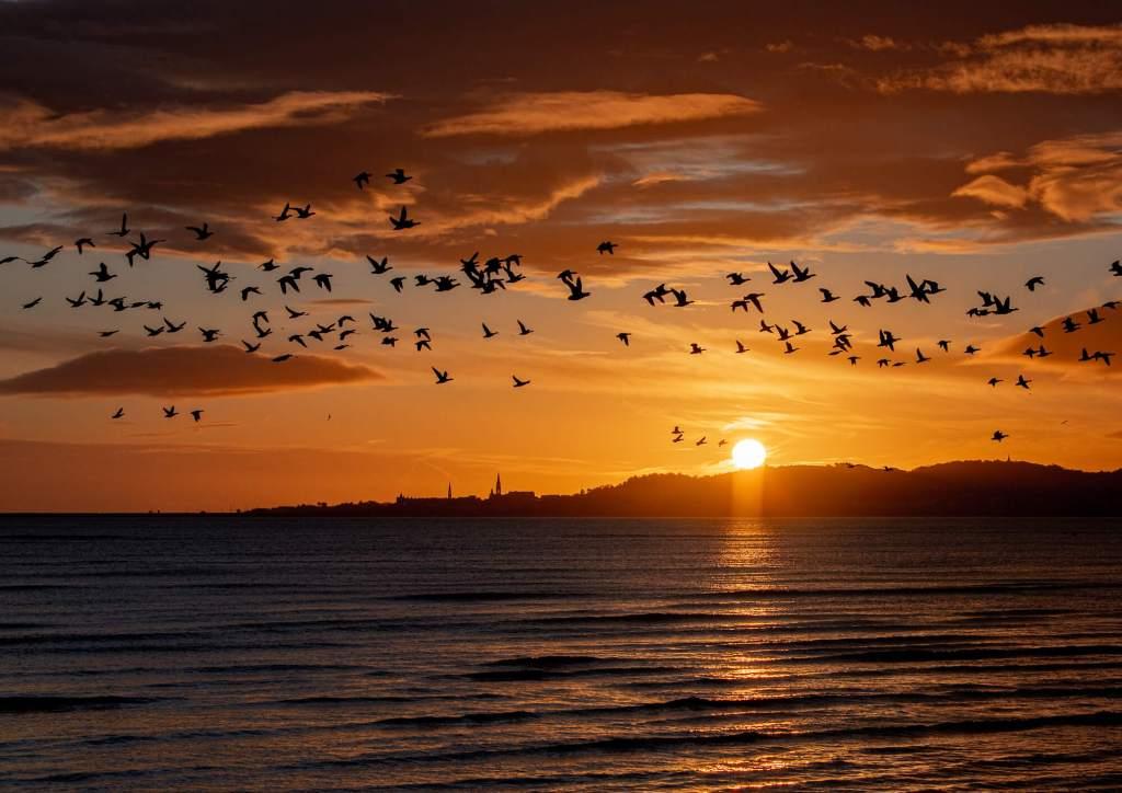 Dawn Dun Laoghaire Dublin Bay