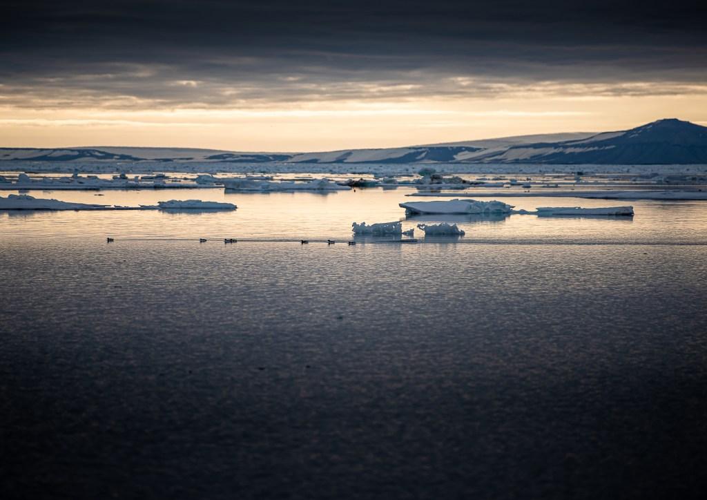 Svalbard Spitsbergen Thickening Ice Hinlopen Strait