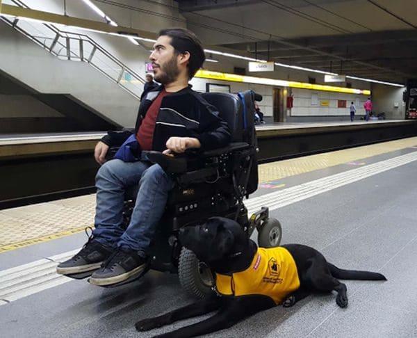 La emocionante historia del joven discapacitado que gracias a su perra de asistencia viajó en subte por primera vez
