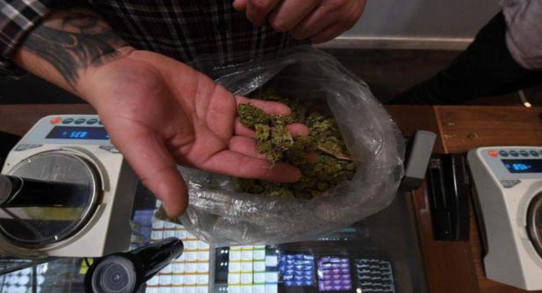 Experiencia inédita: comenzó la venta de marihuana en las farmacias de Uruguay – Ambito.com