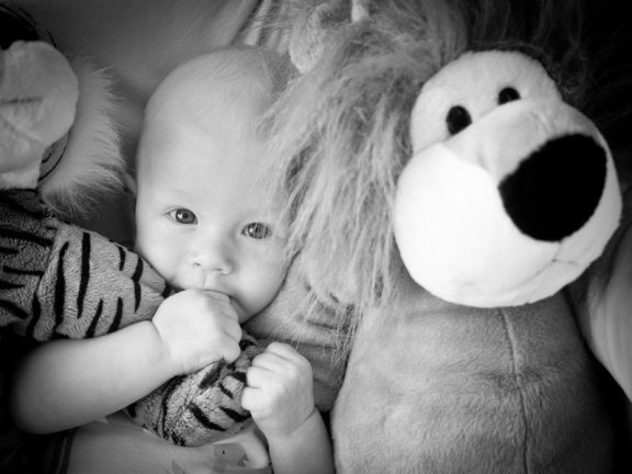 baby with lion stuffed animal