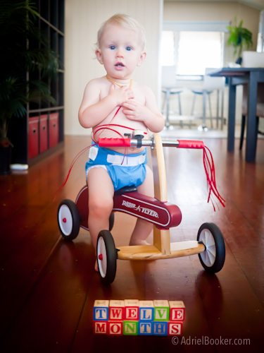Judah's First Birthday 12 month photos