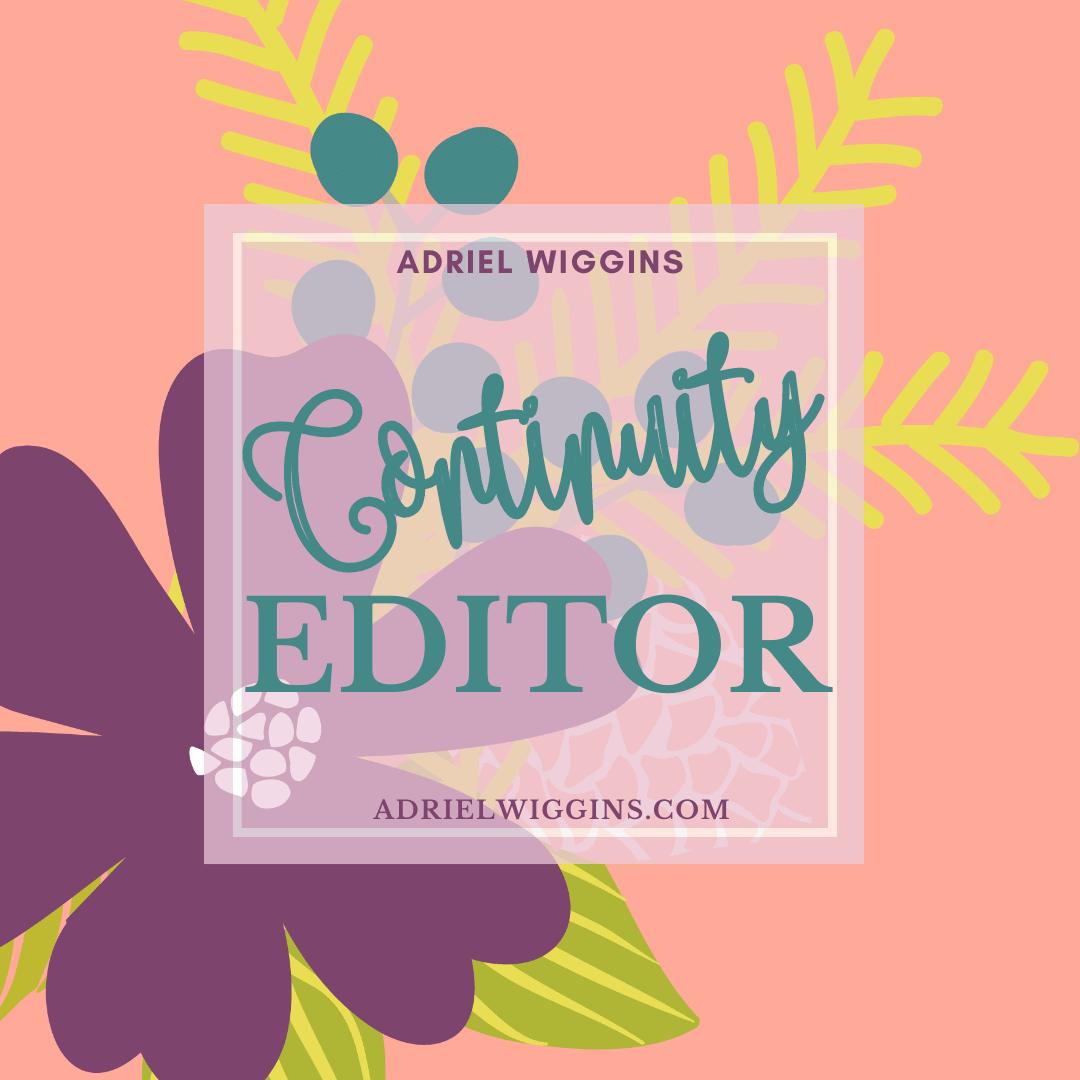 Continuity Editor