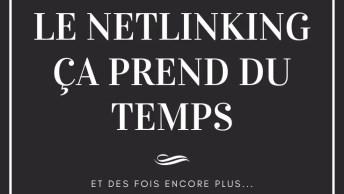 netlinking c'est long