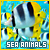 seaanimals