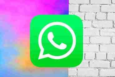 WhatsApp backup कैसे करें?