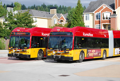 Redmond Transit Center - B-Line Buses Queued Up